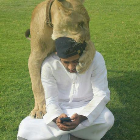 lion biting arab man's head
