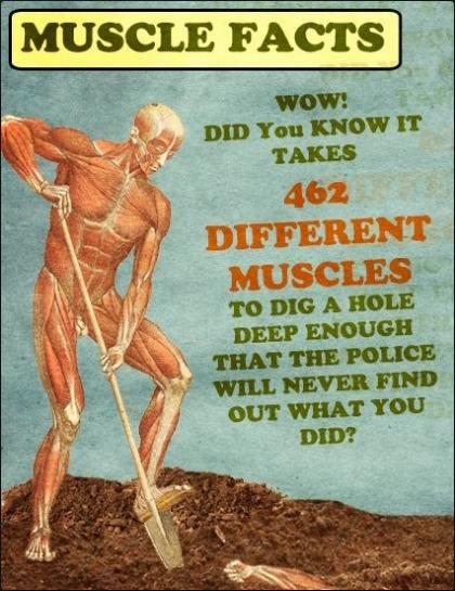 dyk, wtf, muscles, hole, deep