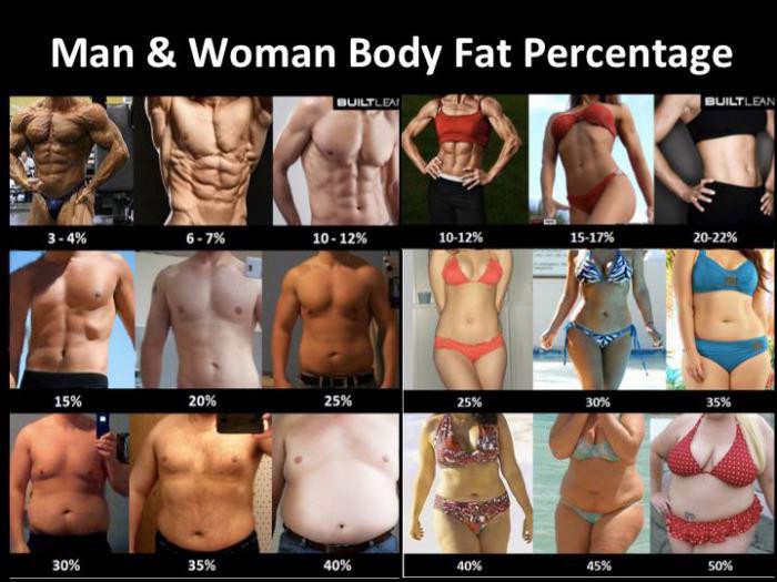 body, fat, percentage, chart, man, woman