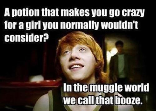 harry potter, ron, muggle, alcohol, potion, meme