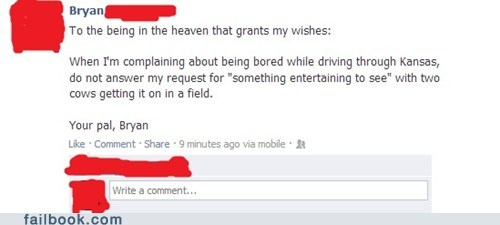 kansas, facebook, status, cows mating, god