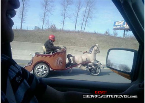 best, motorcycle, horse and carriage, highway