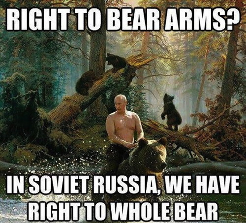meme, soviet russia, bear arms, whole