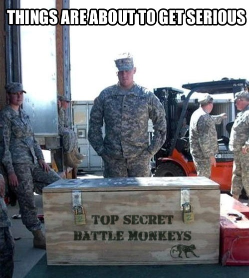army, crate, wtf, battle monkeys, top secret, meme