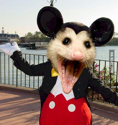 mouse, disney, mickey, wtf