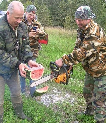 watermelon, chainsaw