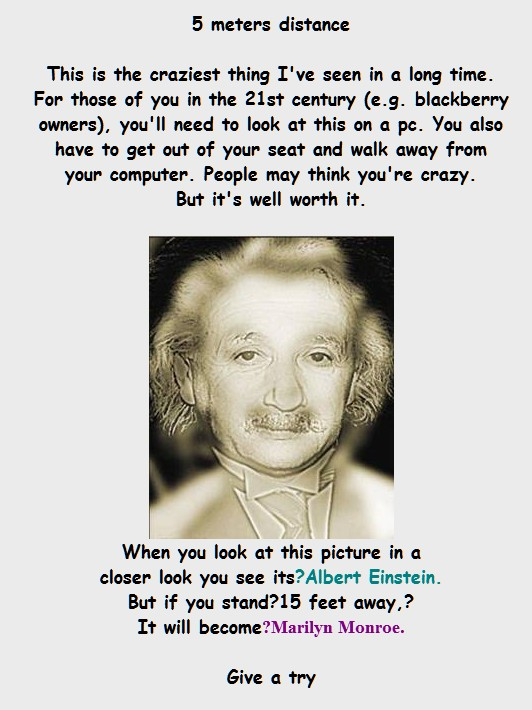 marilyn monroe, albert einstein, optical illusion