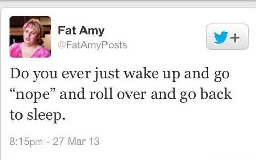do you ever just wake up and go nope and roll over and go back to sleep, fat amy, twitter