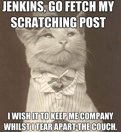 jenkins go fetch my scratching post, i wish it to keep my company whilst I tear apart the couch, meme