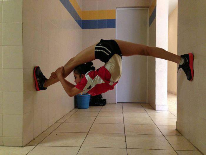 flexibility, skills, strength