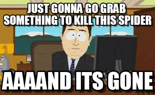 kill spider, gone, meme, lol, south park