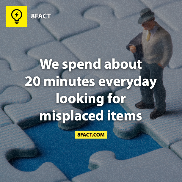 dyk, fact, 20 minutes, misplaced items, searching