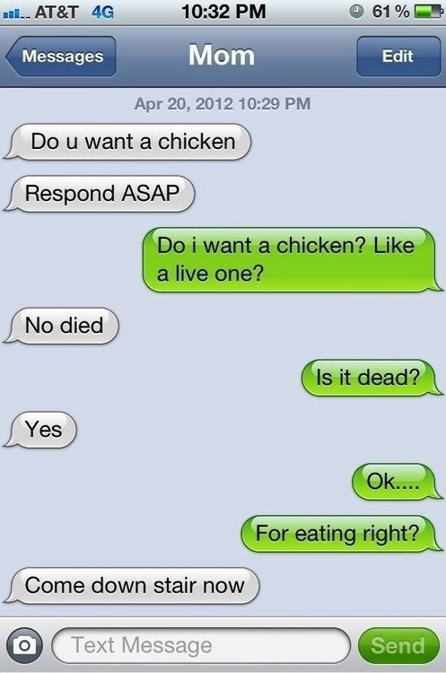 do you want a chicken, respond asap, like a live on?, no died, for eating right?, come down stairs now