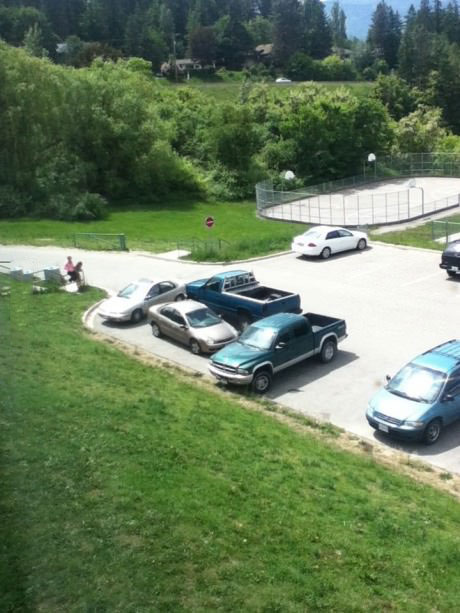 asshole parking, douchebag, troll