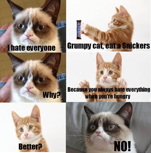 grumpy cat, meme, snickers