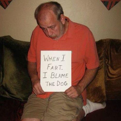 when I fart I blame the dog, shame sign, lol