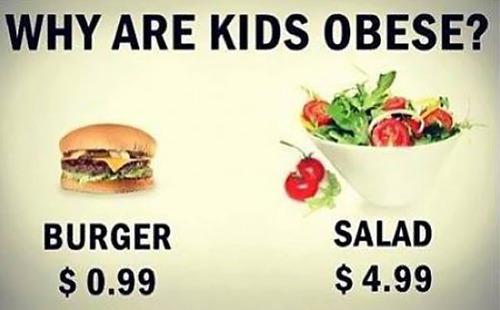 burger, salad, obesity, why, health