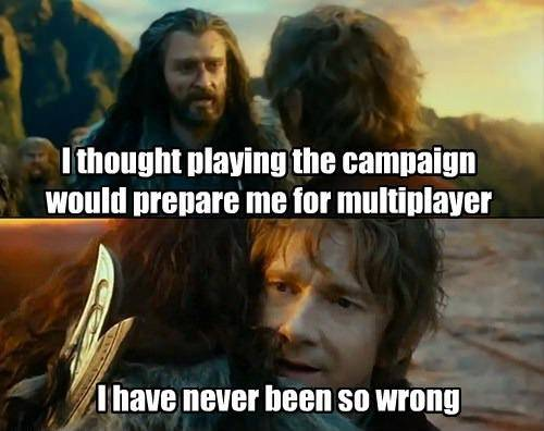 I thought playing the campaign would prepare my for multiplayer, I have never been so wrong