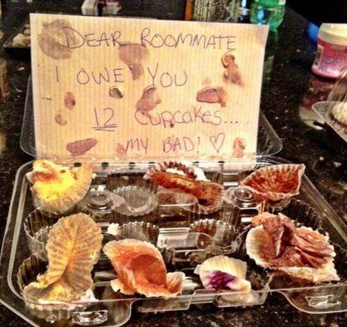 roommate, iou, 12 cupcakes