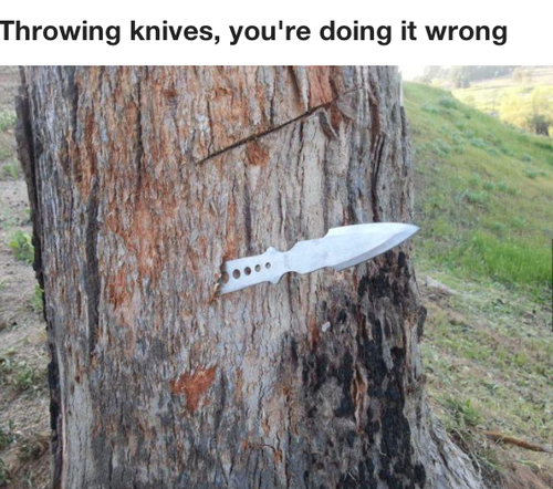 tree, knife, wtf, throwing, fail, you're doing it wrong