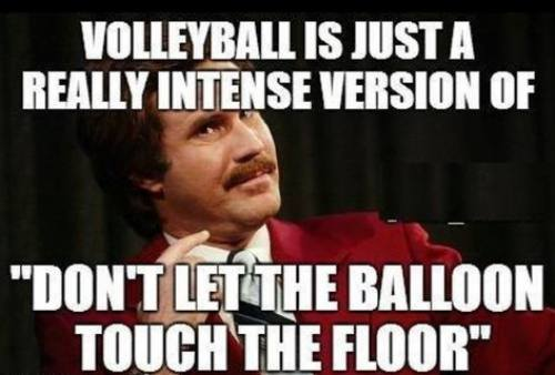 meme, ron swanson, the anchorman, volleyball, balloon, floor