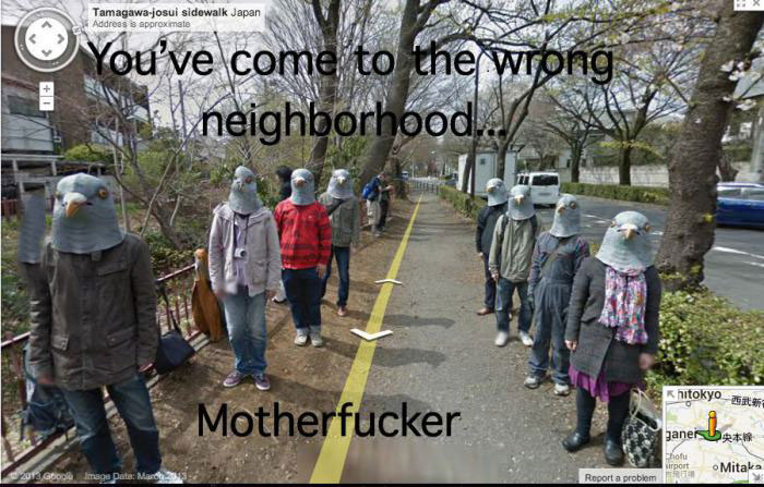 google street view, wrong neighbourhood, pigeon head, wtf
