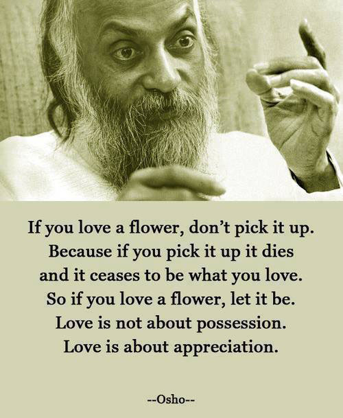 if you love a flower, don't pick it up, because if you pick it up it dies and it ceases to be what you love, so if you love a flower let it be, love is not about possession, love is about appreciation