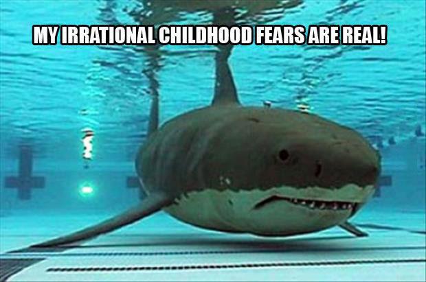 shark, pool, meme, irrational childhood fears