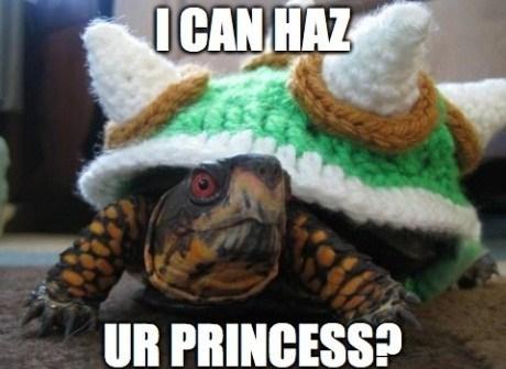 I can haz ur princess, turtle, bowser, meme