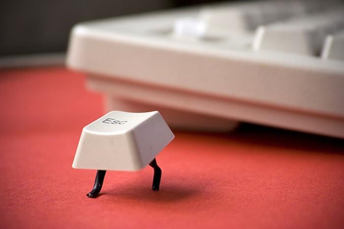 escape key, computer keyboard, escaping, legs
