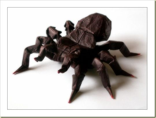 origami, spider, win, cool