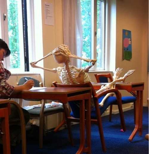 class, skeleton, wtf, desk