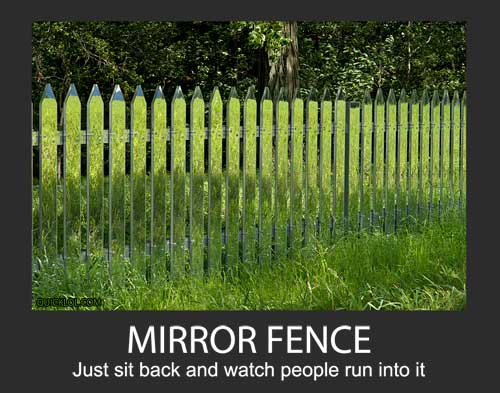 mirror fence, motivation, product, lol