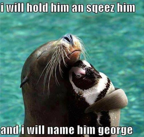 I will hold him and squeeze him, and I will name him george