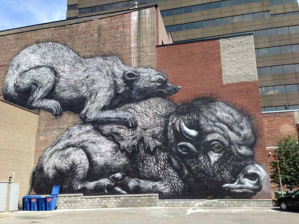 rat, bison, graffiti, huge, art, montreal, plateau