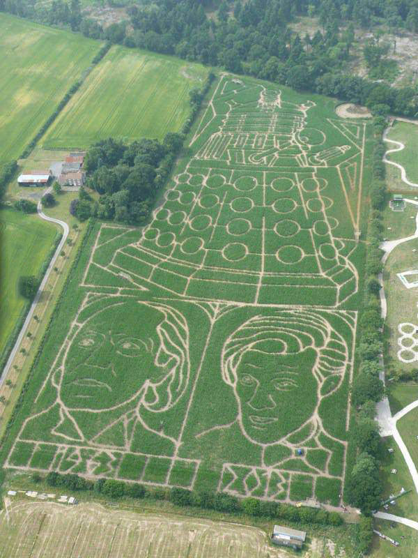 dr who, field art