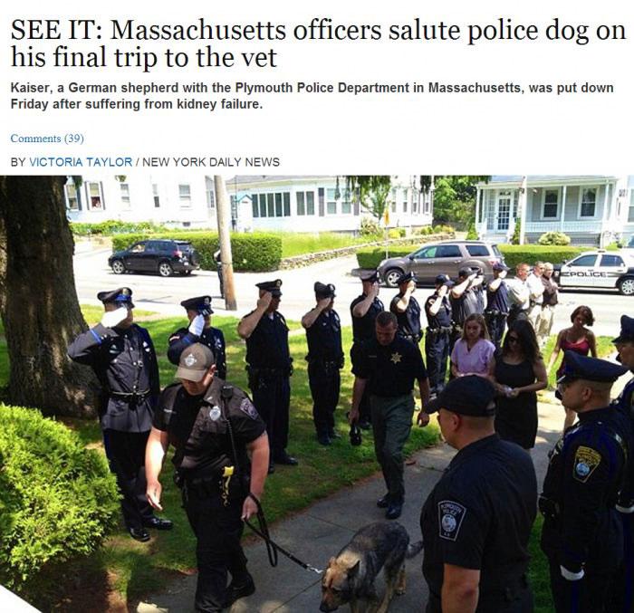 news, good guy police, massachusetts officers, police dog, final trip, vet