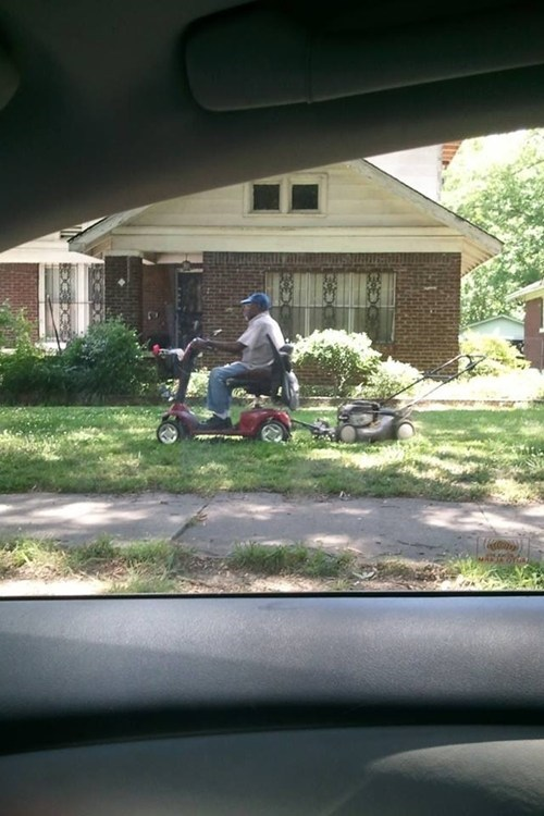 lawn mower, scooter, wtf