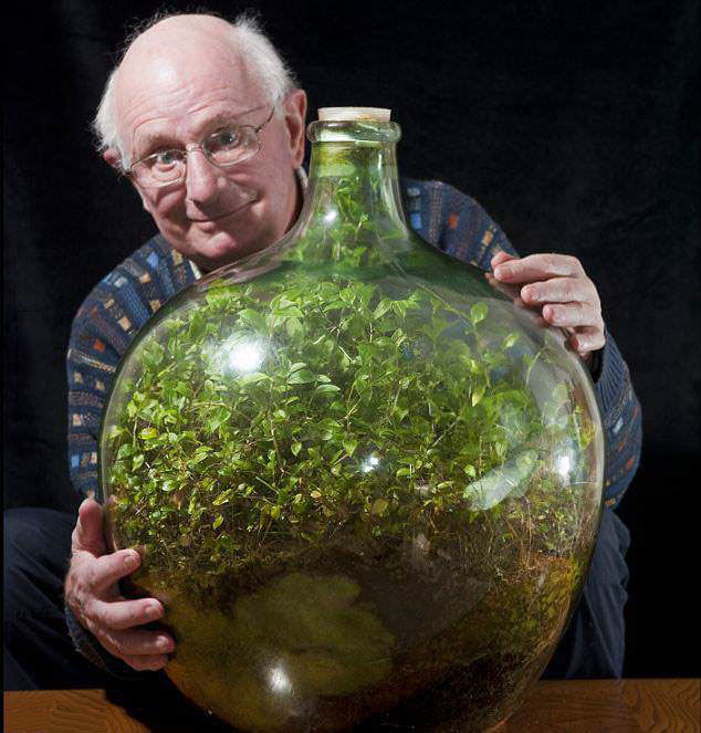 ecosystem, bottle, plants, 1960, impressive, win