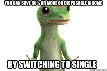 gyco, lizard, meme, single, disposable income