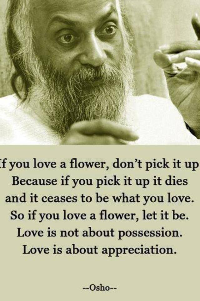 love, flower, pick, let it be, appreciation, possession