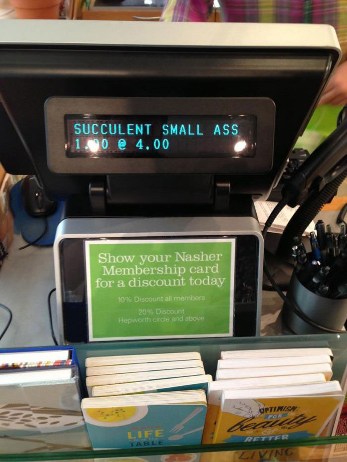 succulent small ass, cash register display, wtf, lol