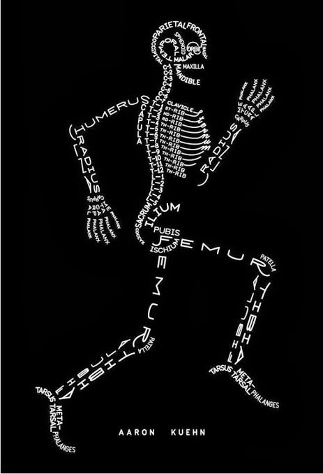bones, names, body, art, anatomy