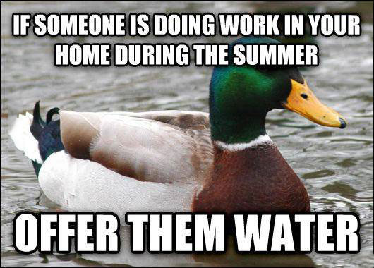 if someone is doing work in your home during the summer, offer them water, meme, actual advice mallard