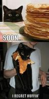 cat, pancakes, soon, regret