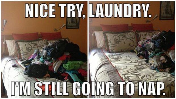 laundry, meme, nap, clothes, lol