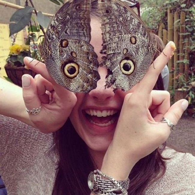 butterfly, eyes, perspective, girl, lol
