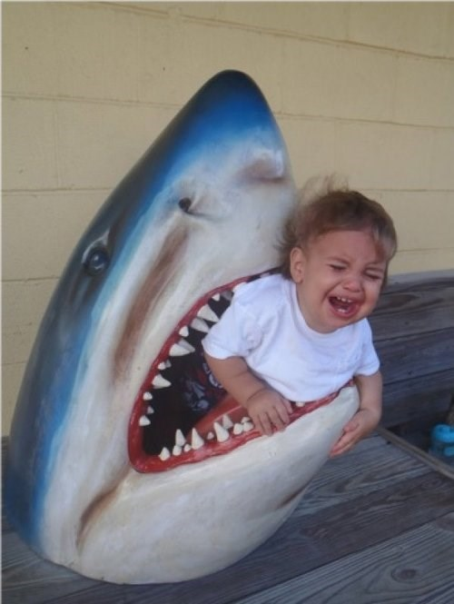 kid, crying, shark, scared, lol, bad parenting, fail
