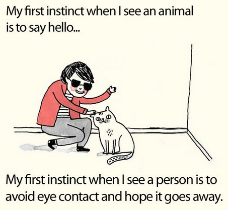 animals, person, human, instinct, hello, avoid eye contact