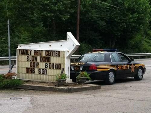 sign, police, cop car, warning, win